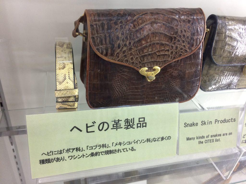 Snake leather bag
