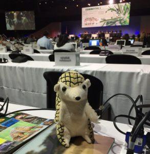 CITES CoP17 会議風景