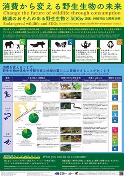 消費から変える野生生物の未来 絶滅のおそれのある野生生物とSDGs