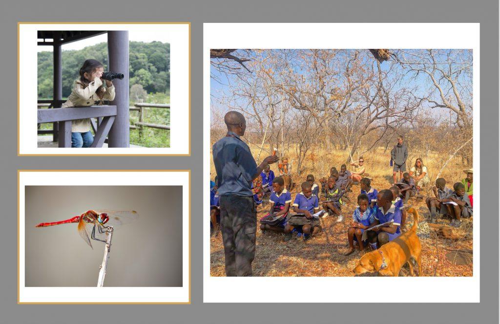 環境教育イメージ写真